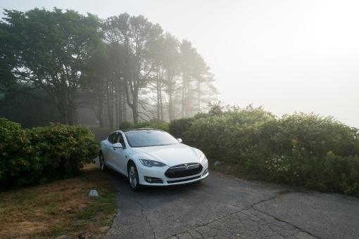 tesla-fog-small-07691